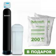 Фільтр комплексного очищення води Ecosoft FK тисяча двісті п'ятьдесят дві CE MIXA